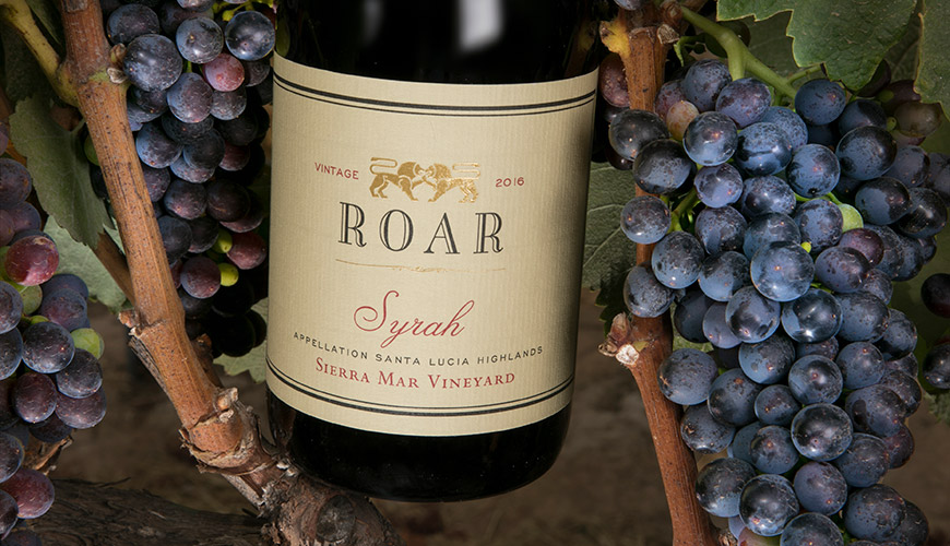 Sierra Mar Vineyard Syrah