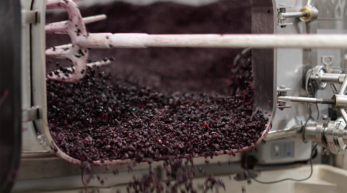 Small-lot Winemaking